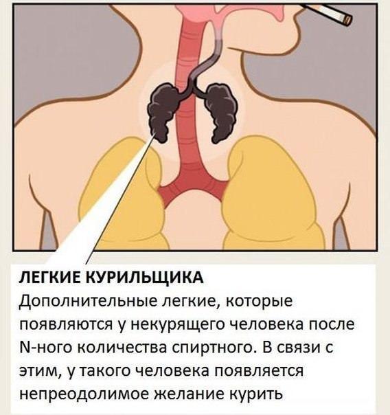 Вторые легкие курильщика
