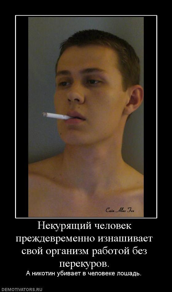 Paint Tool Sai на русском кряк