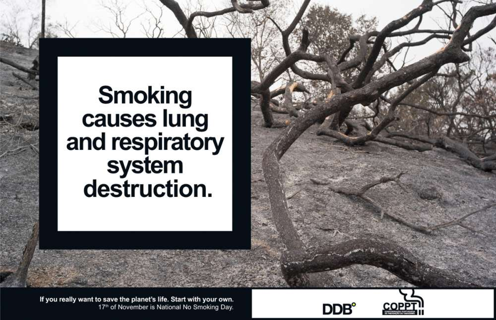 Smoking causes lung and respiratory system destruction.