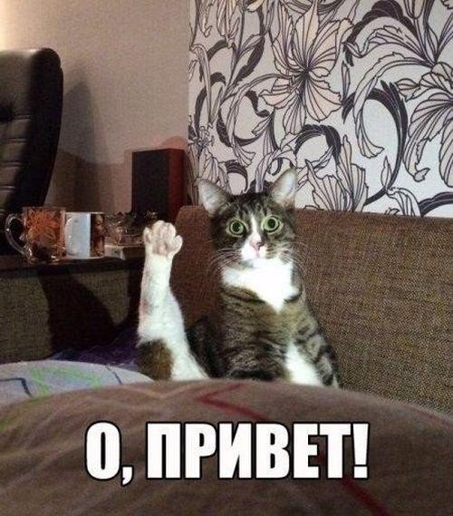 1463727981_podborka_dnevnaya_53.jpg