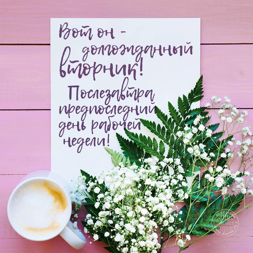 Надписями, открытки доброго утра хорошего вторника