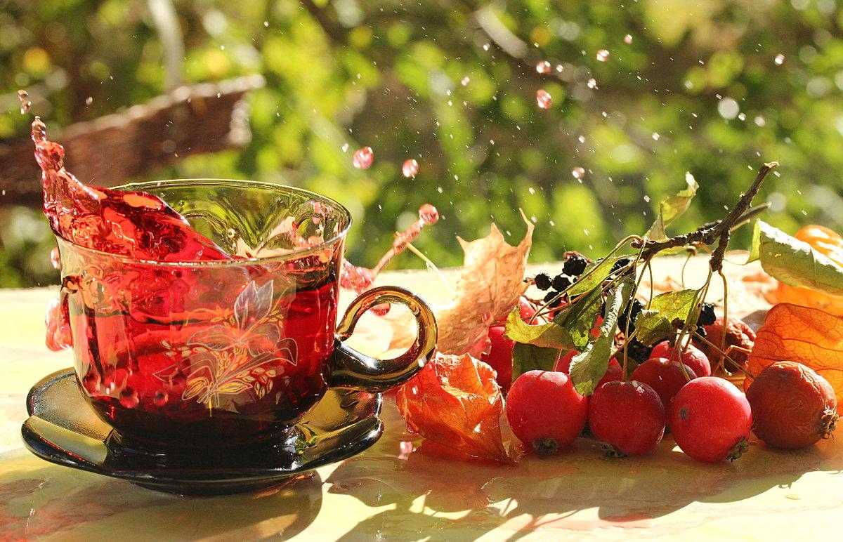 плинтусы красивые картинки с добрым осенним утром и хорошего настроения одно