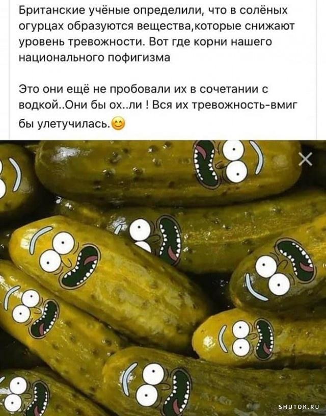 19-39-44-1629231569_shutok.ru.15848319.jpg