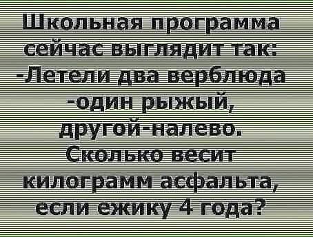 199183081_3823342264441234_4730450607859331093_n.jpg
