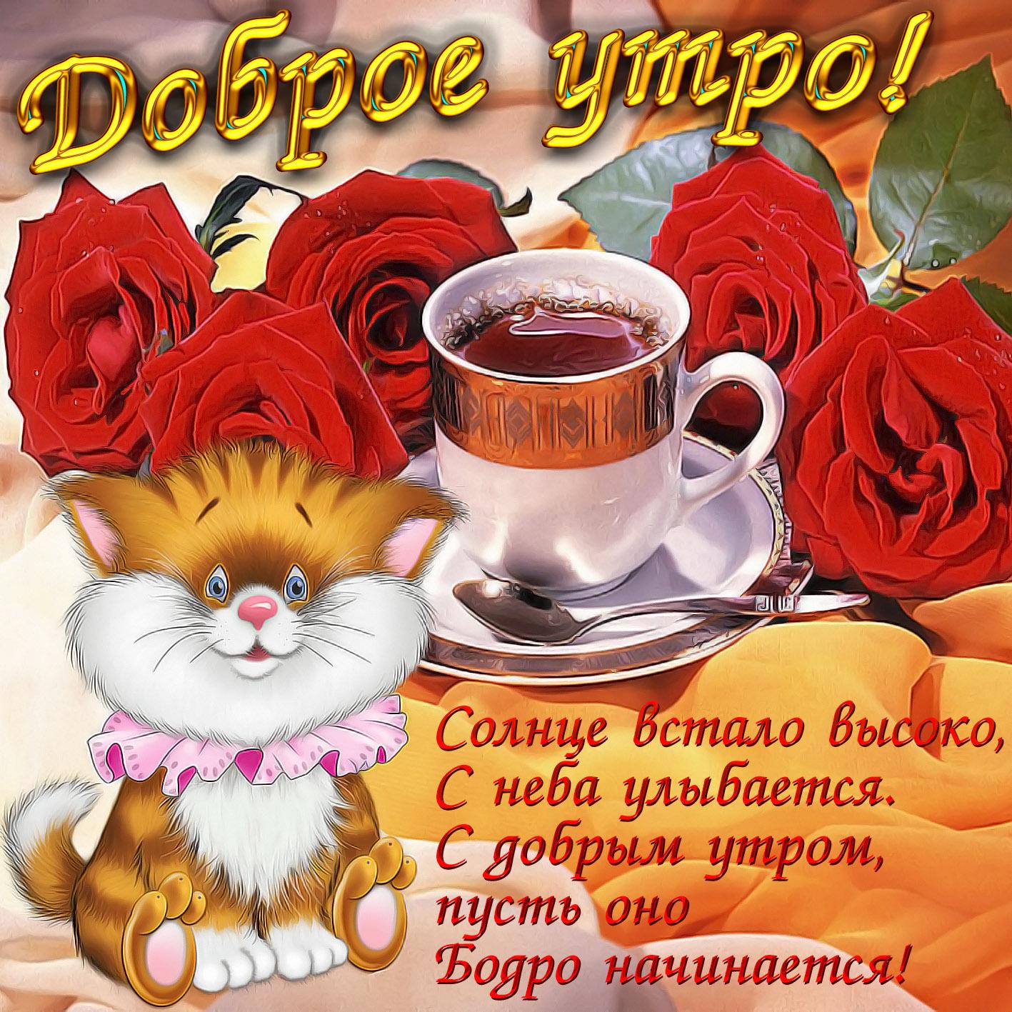 Самые веселые открытки с добрым утром хорошего дня