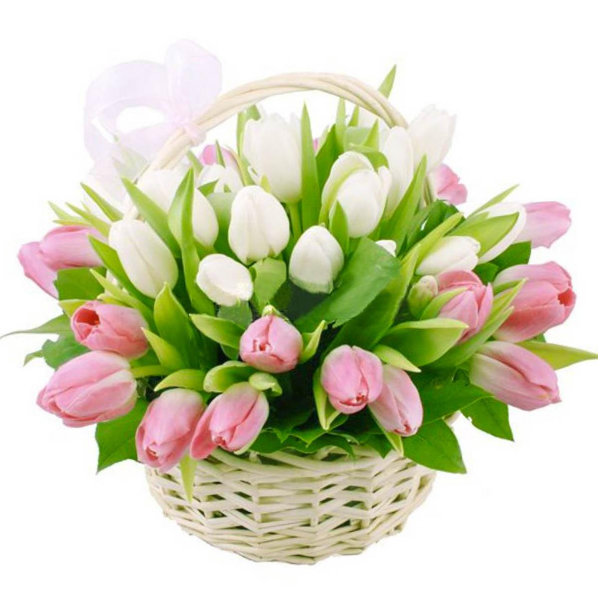 45_korzina_tulips_1.jpg