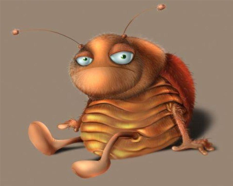 Надписью, жуки прикольные картинки