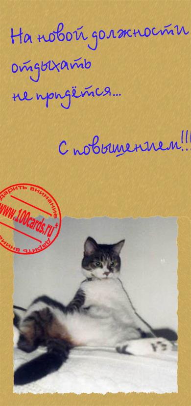 Алена, поздравляю с новой должностью открытка