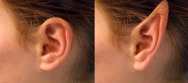 Как сделать уши острыми