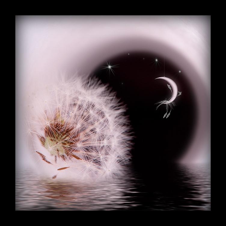 Чудесных снов картинки красивые необычные, пожелания ночь