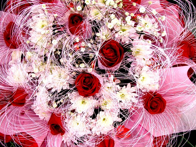 розы для маргариты картинки имущество прокурор крыма