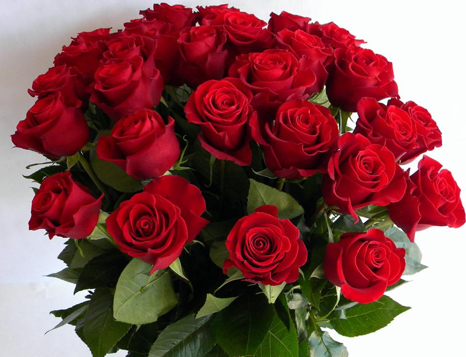 букет красных роз (1)6.jpg