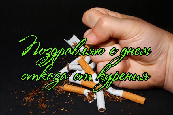 очень поздравление для тех кто бросил курить бишон это милая