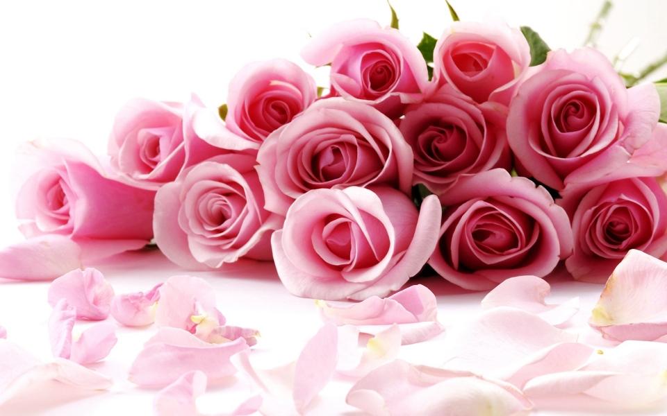 dujina-roz-960x600.jpg