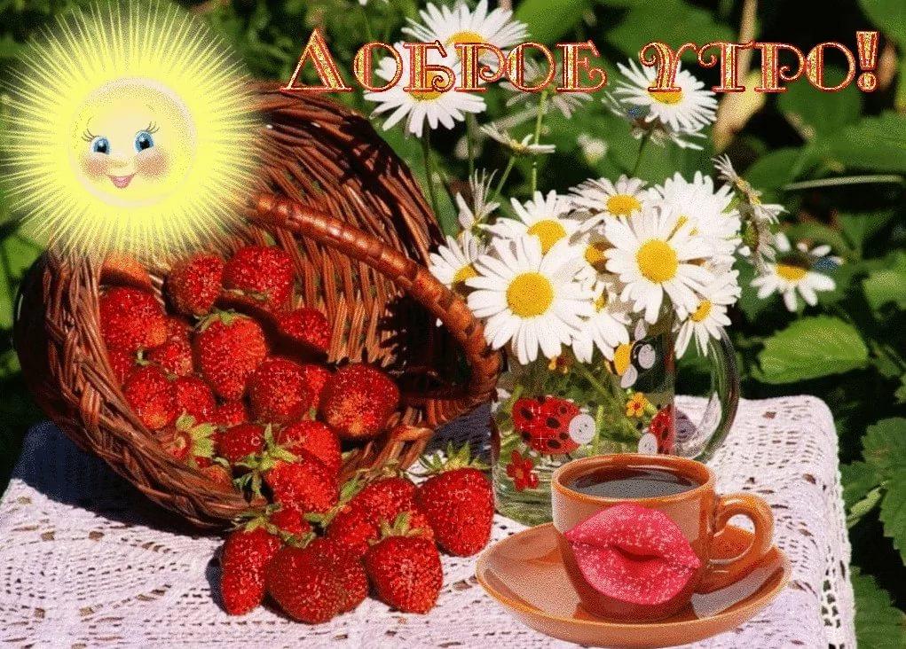 Красивые открытки с добрым утром и прекрасным днем летним, поздравление