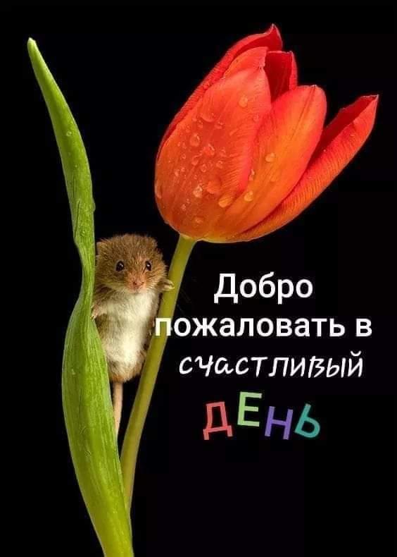 FB_IMG_1557721813491.jpg