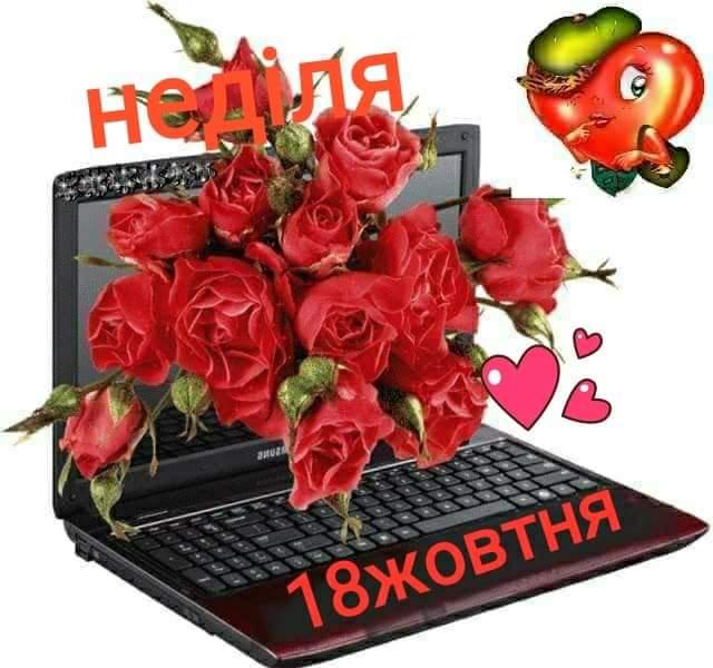 FB_IMG_1602992054173.jpg