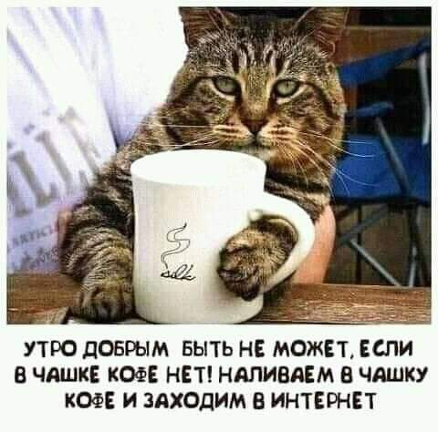 FB_IMG_1618717967263.jpg