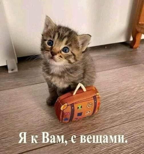 FB_IMG_1629142437113.jpg