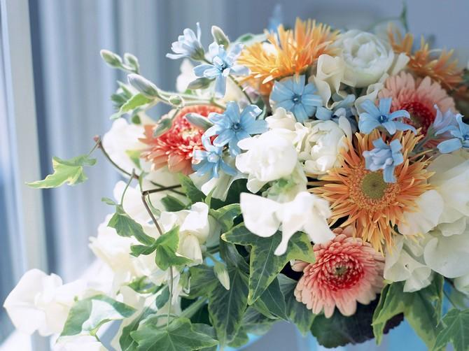 flower_7_(43).jpg