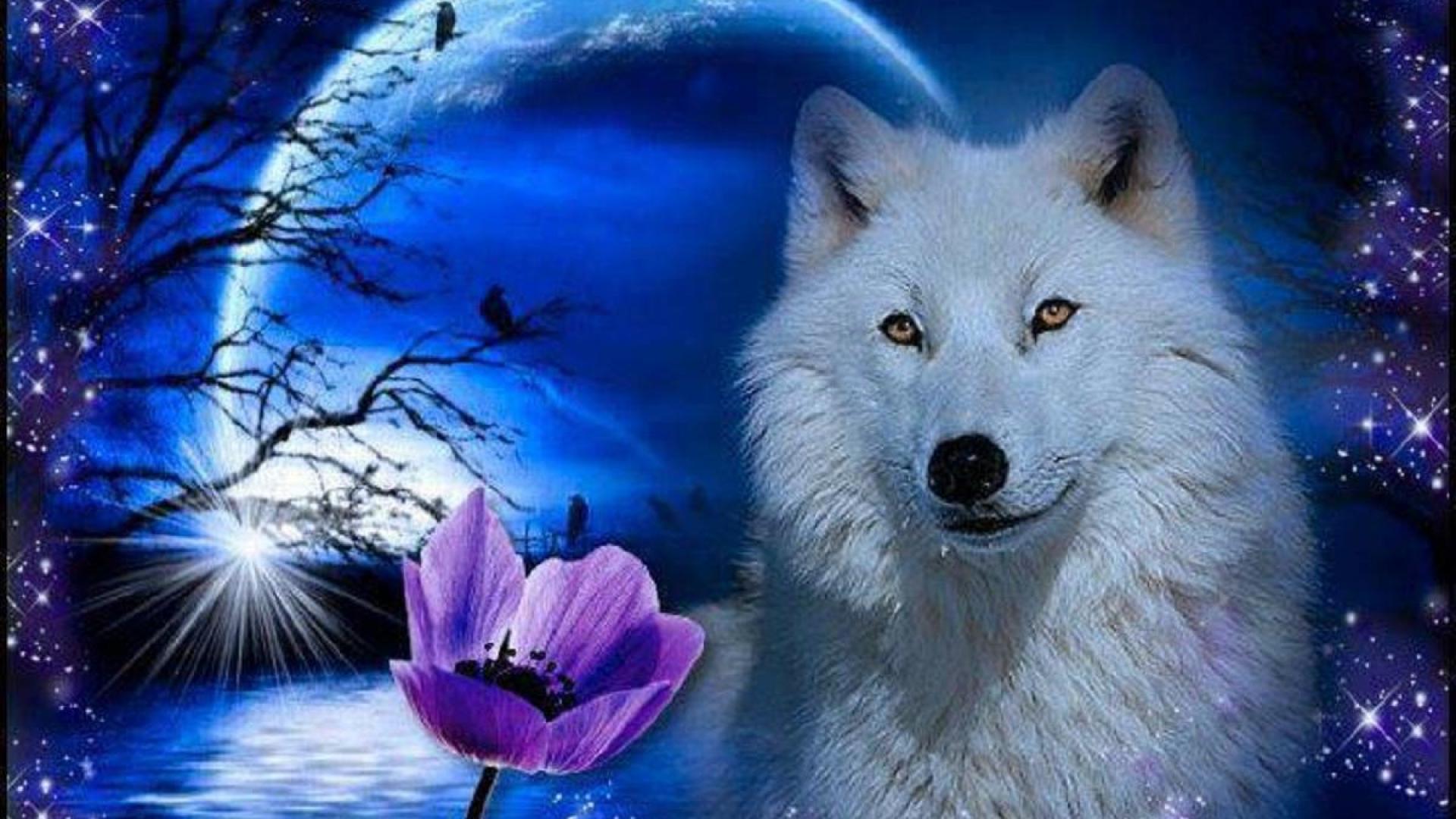 анимационные фото волка с цветком бурно