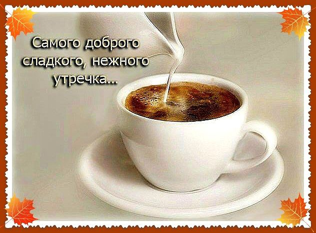 http://ne-kurim.ru/forum/attachments/getimage-15-jpg.83847/