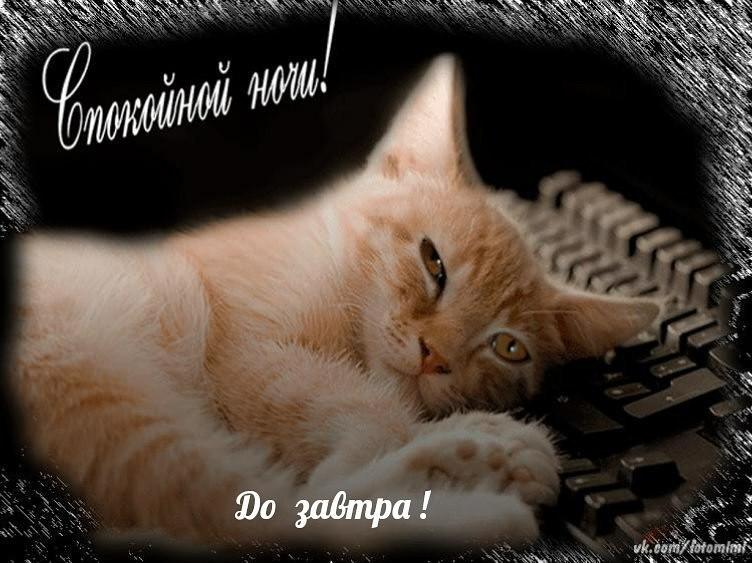 открытка хорошей ночной работы