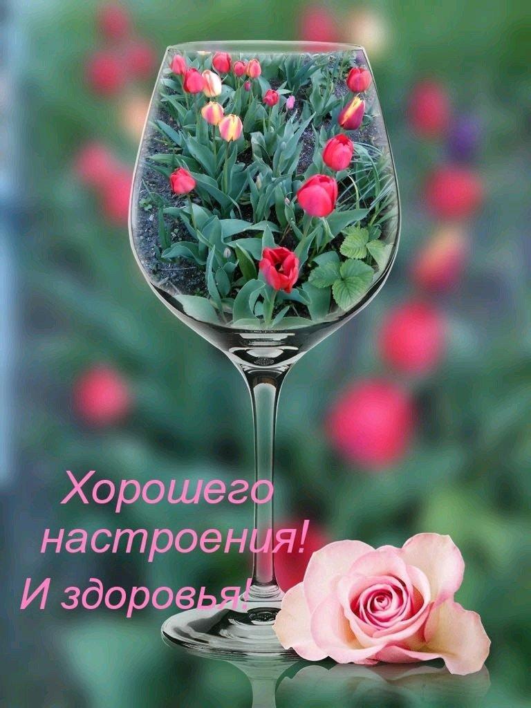 открытка желаю здоровья и хорошего настроения крупных