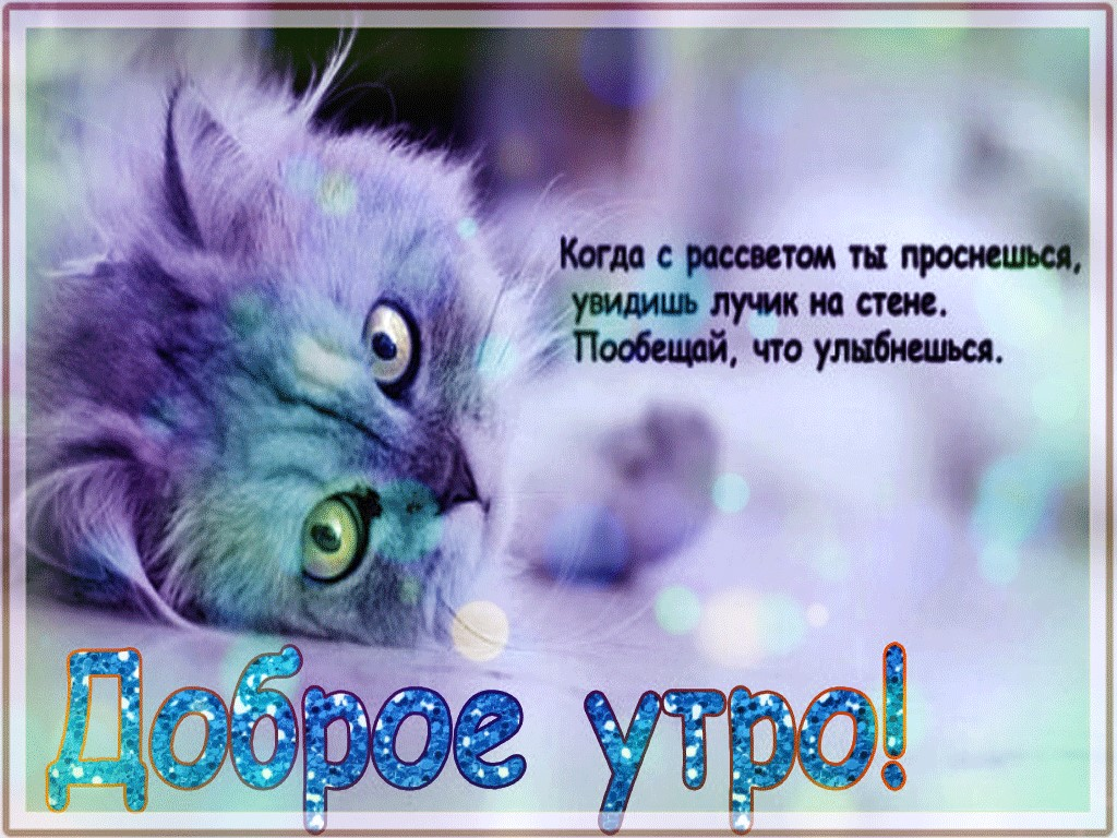 Картинки именем, открытки с добрым утром доченька с котятами