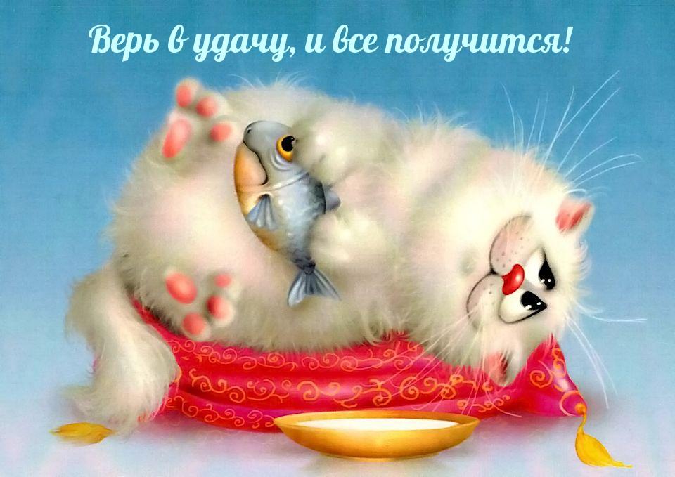images_15763.jpg