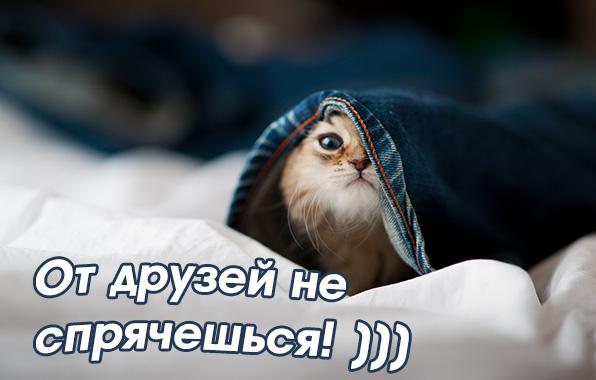 images_4010.jpg
