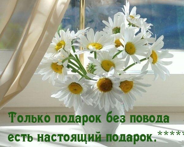 images_8141.jpg