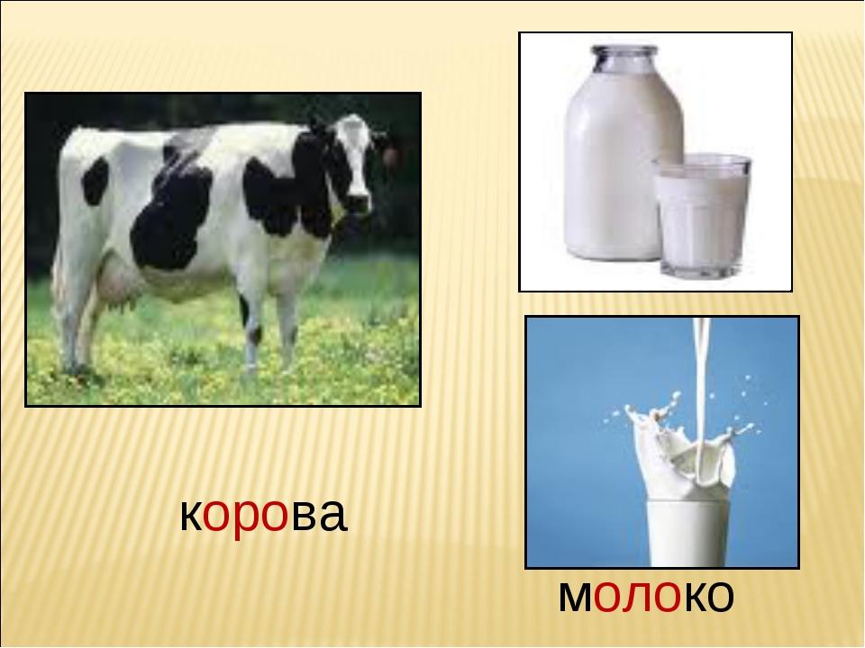Как сделать кефир из коровьего молока