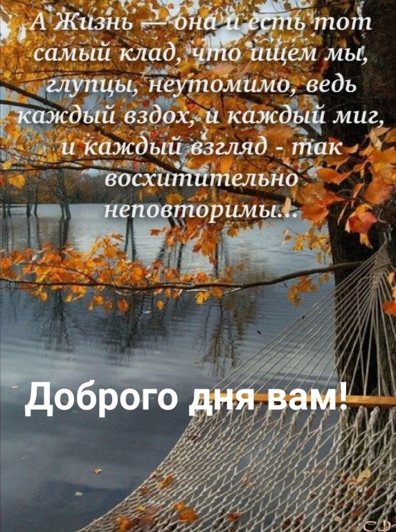 IMG_20190915_135821_1.jpg