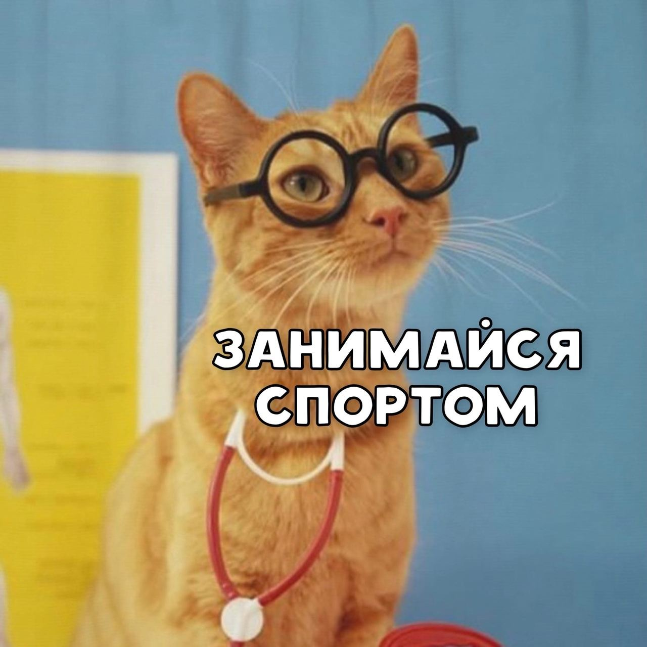 IMG_20210818_192631_283.jpg