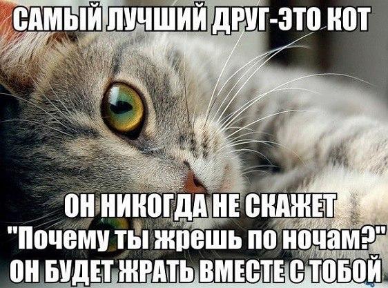 IMG_20210915_082257_662.jpg