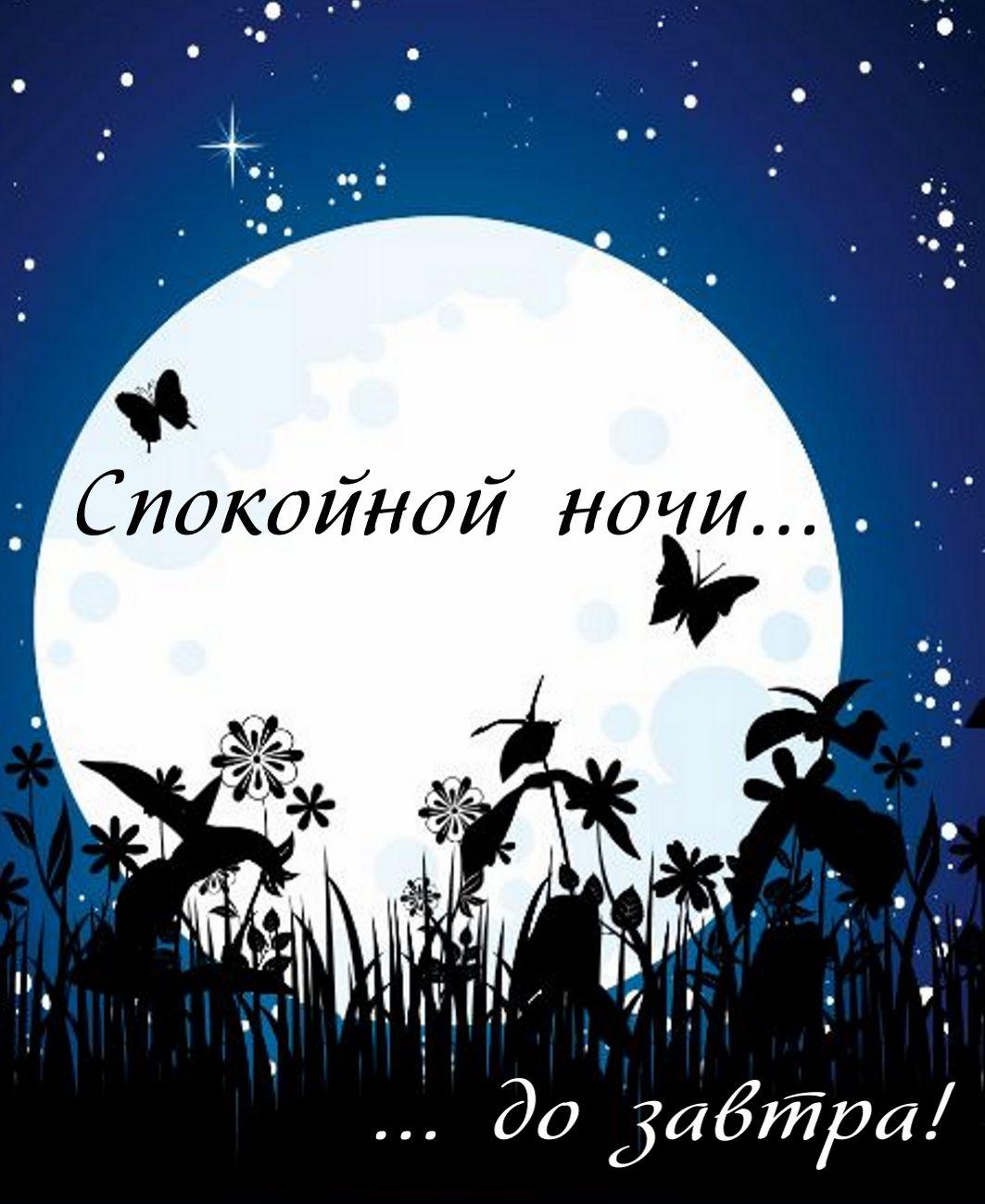 krasivye-otkrytki-kartinki-s-pozhelaniem-spokoynoy-dobroy-nochi-i-sladkih-snov-chast-2-aya-19.jpg