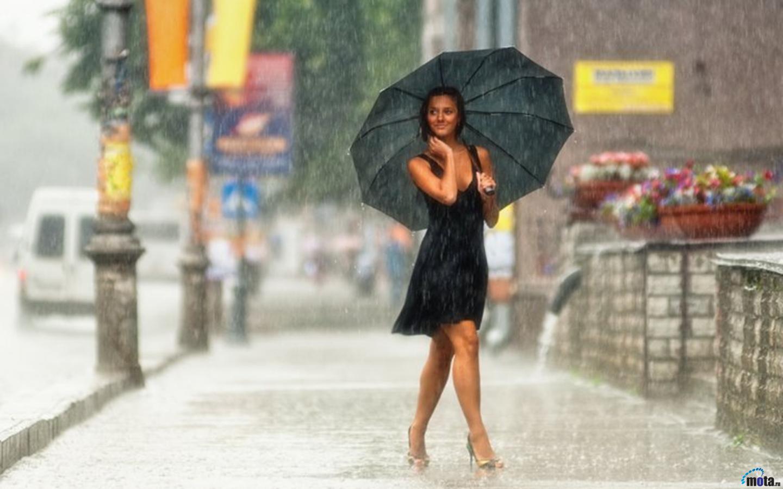 Ролики золотого дождя 22 фотография