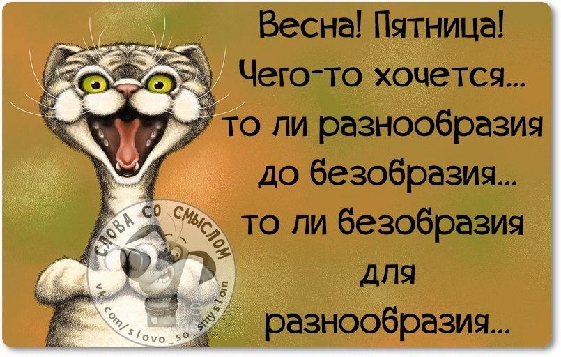 mpdqqmyge24-jpg.836878