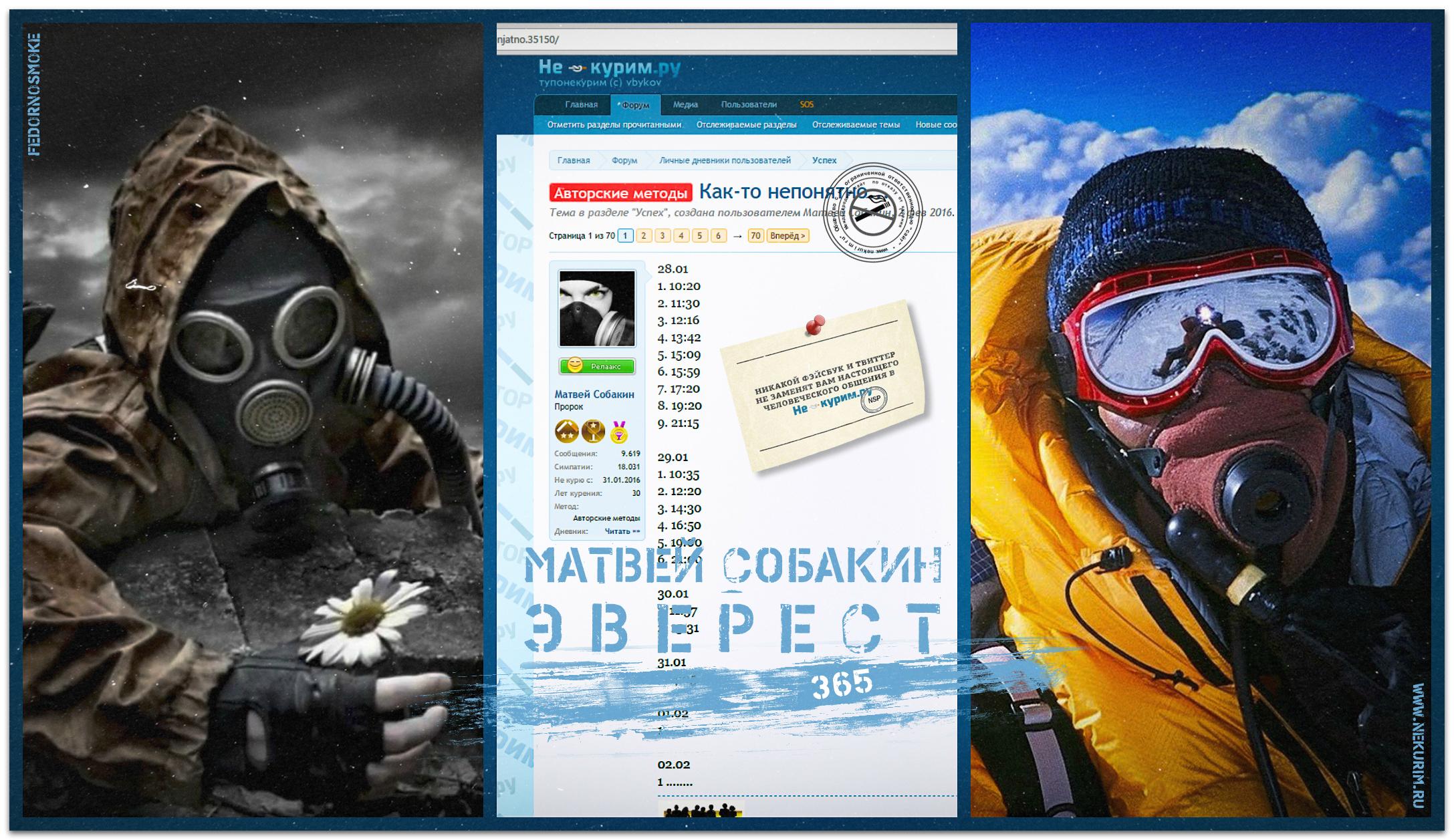 novyj-kollazhms-jpg.319603