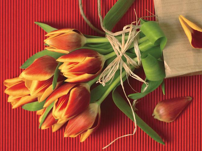 pcb31ee32ea85b90d7d8a5a8dfc8a61420_a_bunch_of_flowers(9).jpg