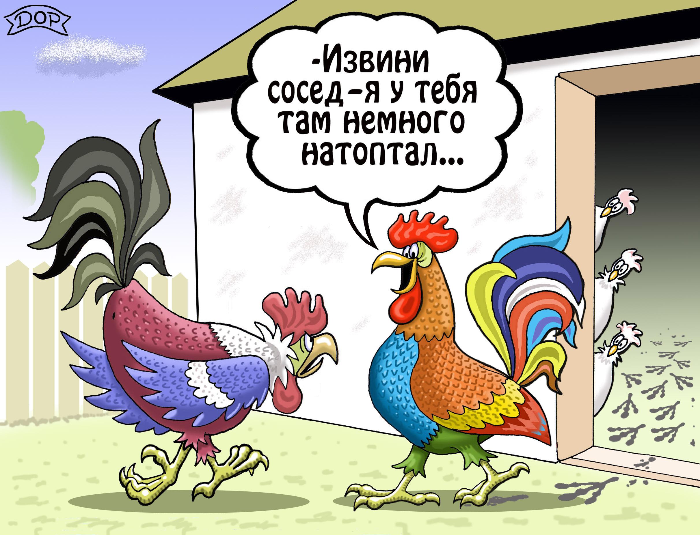 Курица открытки прикол, аист картинки