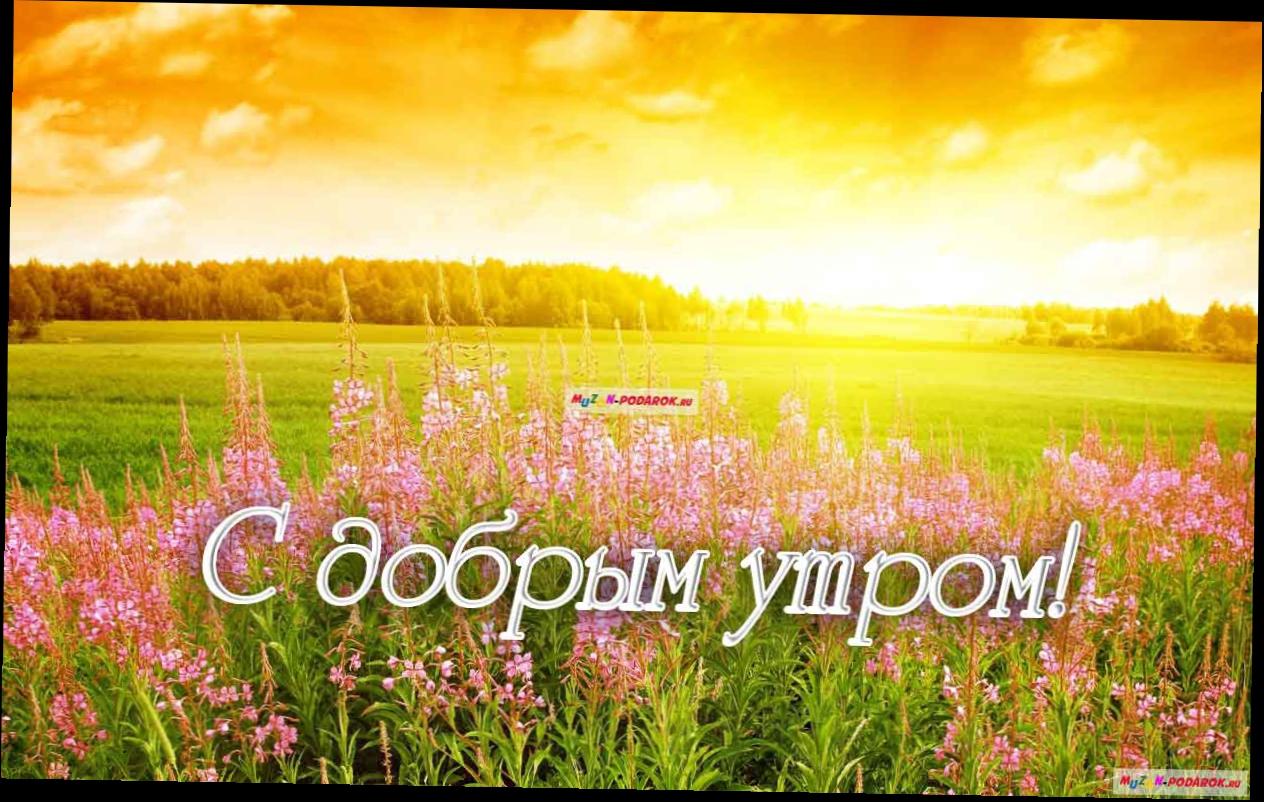 открытки доброе утро красивой природой дружеском сайте ссылку