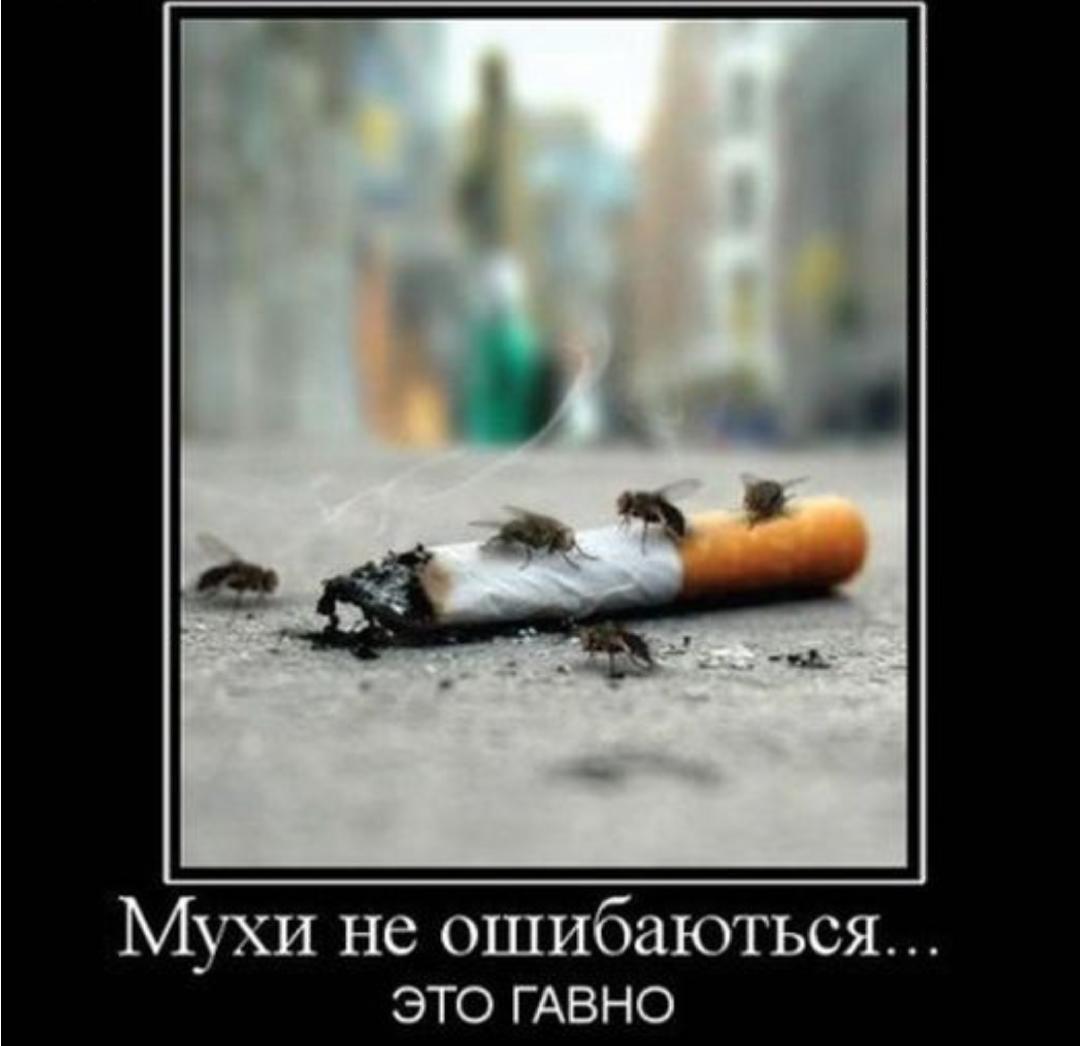 Картинка я бросил наркотики