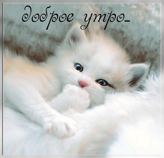 SDnem-rozhdeniya_ru-440.jpg
