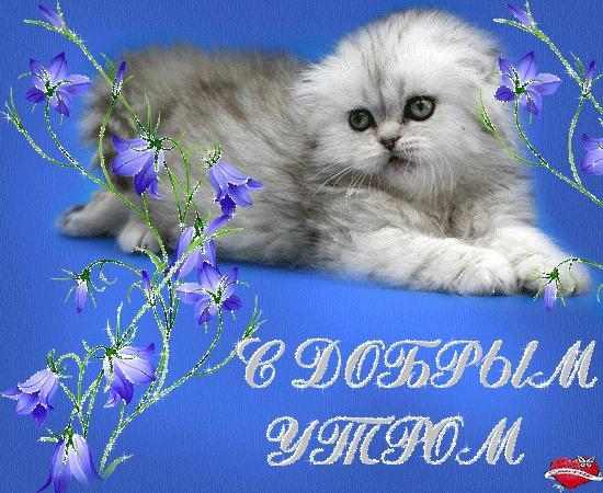 SDnem-rozhdeniya_ru-444.jpg