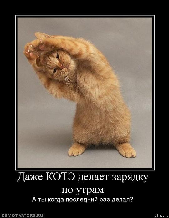 SDnem-rozhdeniya_ru-446.jpg