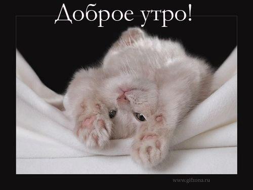 SDnem-rozhdeniya_ru-449.jpg