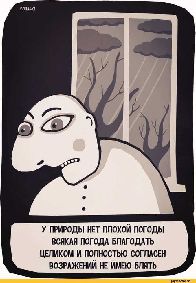 soba4ki-Комиксы-погода-серость-2088290.jpeg
