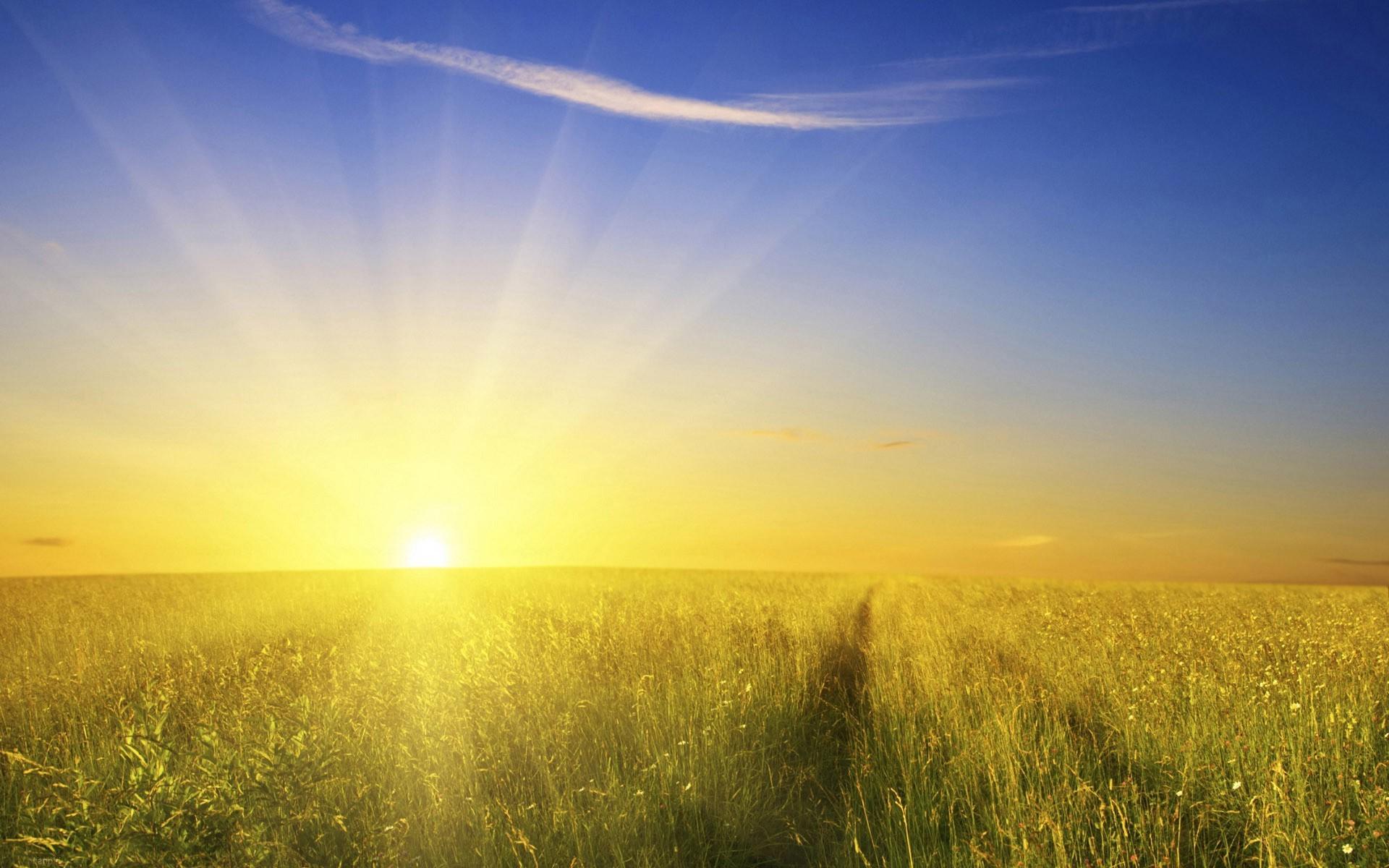 sunlight-landscape-food-sunset-grass-sky-field-sunrise-evening-morning-Sun-horizon-dusk-Rapese...jpg